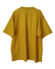 yellowback